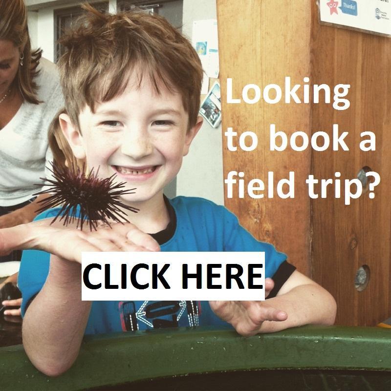 Book a Field Trip
